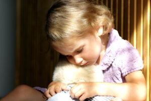 Çocuklarda Psikolojik Dayanıklık - Bilge Kutu
